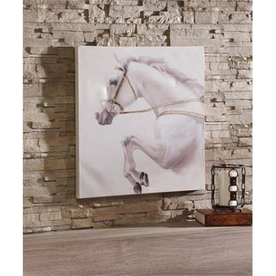 Toile cheval blanc sauteur