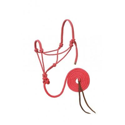 Licou de corde et laisse Weaver rose, or et turquoise Full
