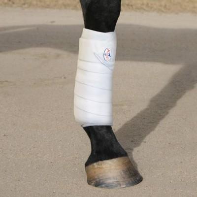 Combo bandage Professional's Choice blanc