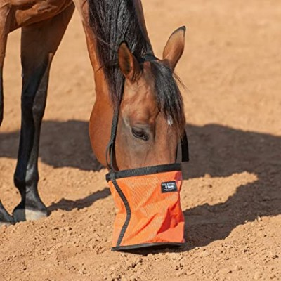Sac à moulée Cashel orange cheval